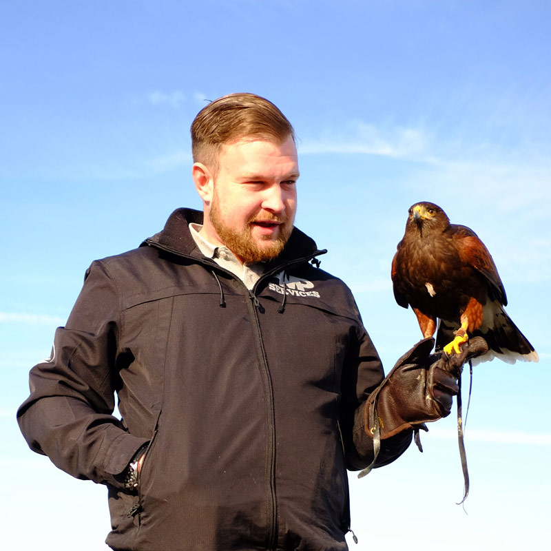 Matthew Blackwell Pest Bird Control Technician London