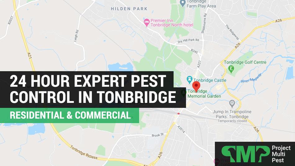 24 hour pest control services Tonbridge, Kent