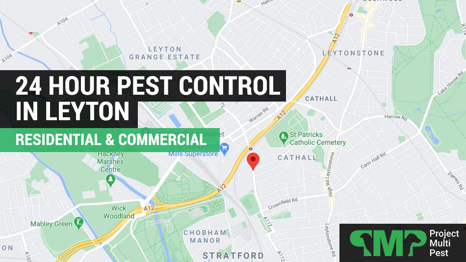 24 hour pest control in Leyton