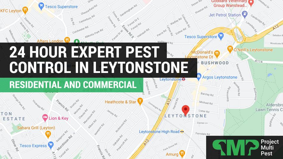 24 hour pest control Leytonstone E11