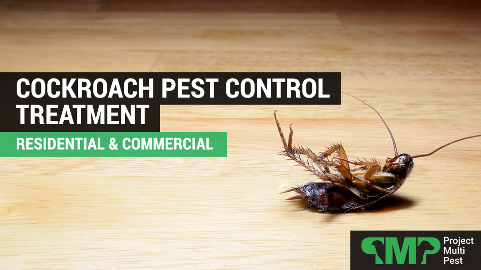 cockroach exterminators and pest control london