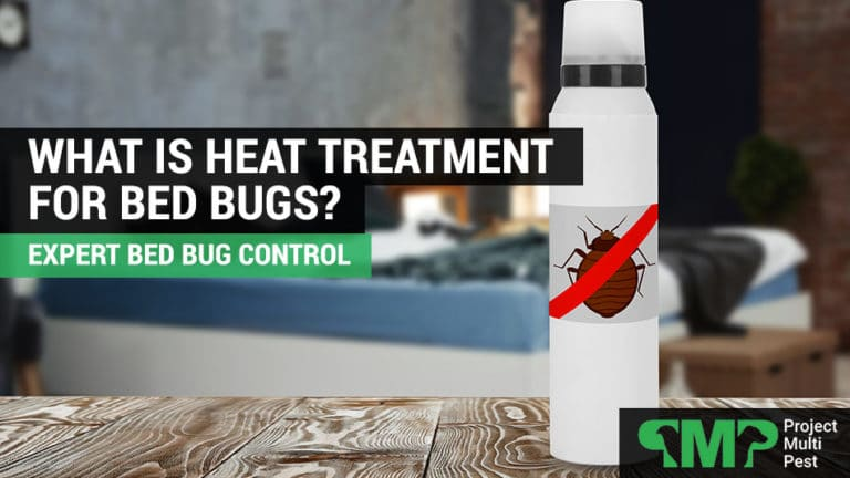 what is bed bug heat treatment