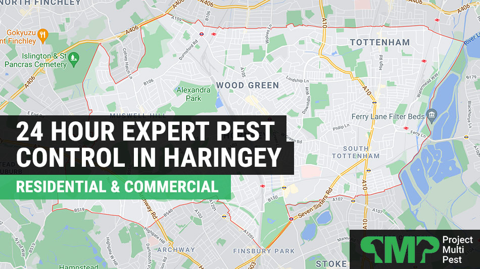 24 pest control services in Haringey